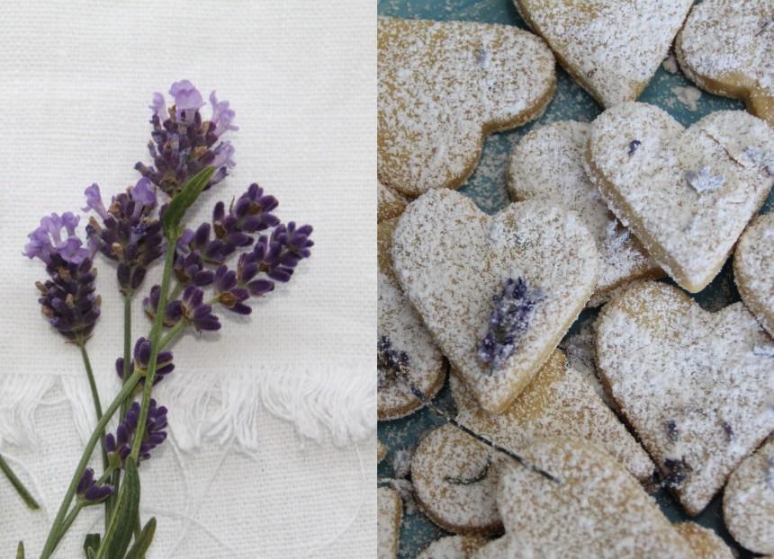 Lavendelkeks