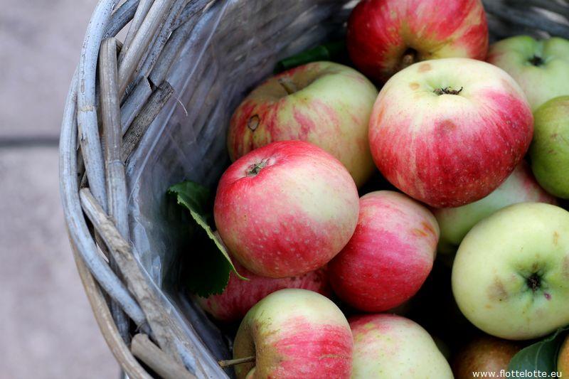 FlotteLotte Apfelschnecken_03