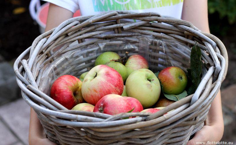 FlotteLotte Apfelschnecken_04